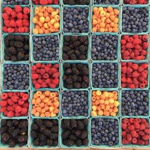 berries-fruits-low-in-sugar